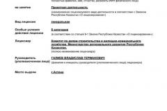 лицензия ГеоПроектМонтажСтрой, страница 1